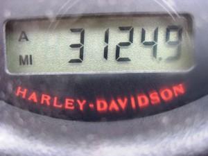 3124,9 Meilen = 5000 Kilometer - die Hälfte ist schon vorüber...